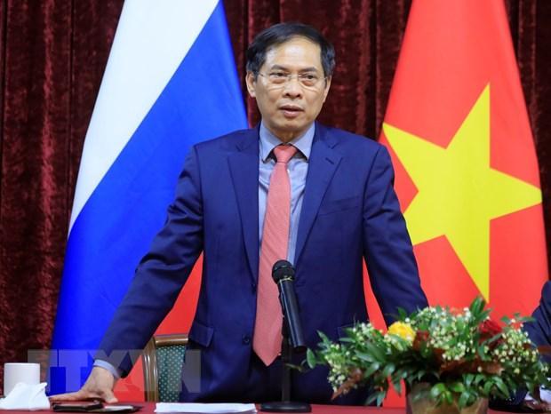 Bo truong Bui Thanh Son hoi kien Pho Thu tuong Nga Dmitry Chernyshenko hinh anh 1