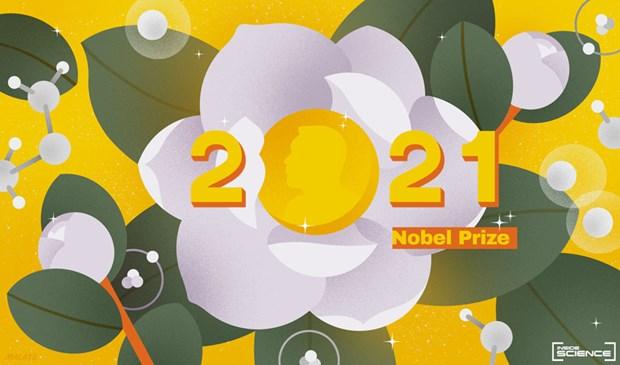 Nhan dinh cac ung vien tiem nang cho giai Nobel Vat ly 2021 hinh anh 1