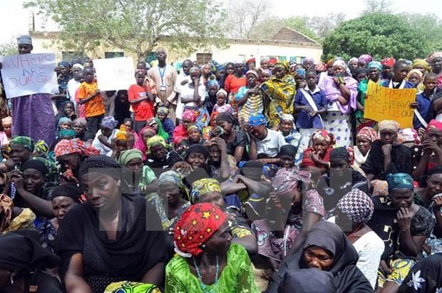 Nigeria giai thoat them hon 230 phu nu, tre em khoi Boko Haram hinh anh 1