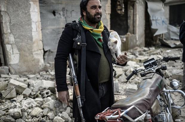 Phan Lan cu binh sy sang Iraq huan luyen nguoi Kurd chong IS hinh anh 1