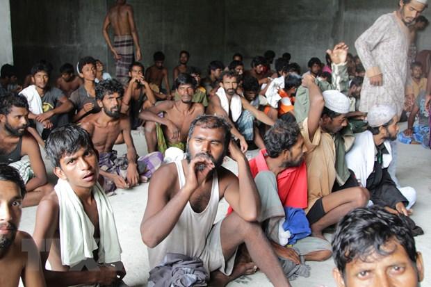 Qatar ho tro Indonesia 50 trieu USD tiep nhan nguoi ti nan Rohingya hinh anh 1