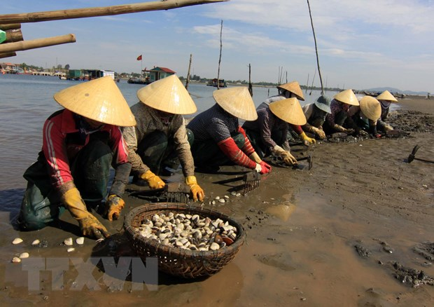 Xu Thanh day manh phat trien du lich thong qua van hoa bien hinh anh 1