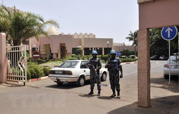 Mali: Luc luong phien quan ky thoa thuan hoa binh voi chinh phu hinh anh 1