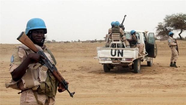 Mali: Phien quan tan cong luc luong gin giu hoa binh, 6 linh tu vong hinh anh 1