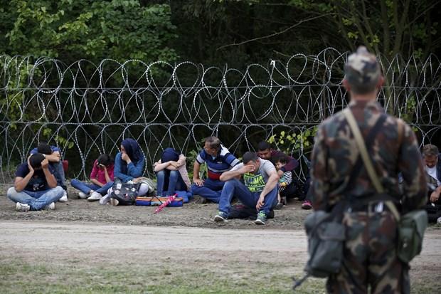 Van de nguoi di cu: Frontex de nghi EU cung tuan tra bien gioi hinh anh 1