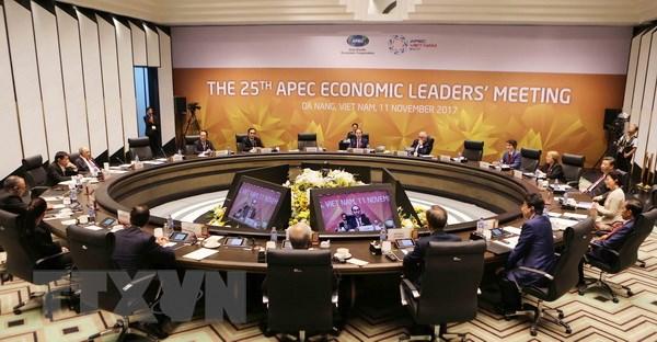 APEC 2017: Nang tam hop tac APEC va vi the cua Viet Nam hinh anh 1