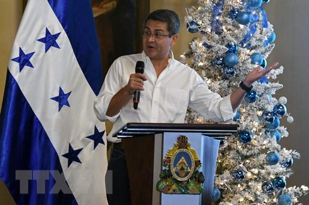 Tong thong Honduras keu goi phe doi lap tien hanh doi thoai hinh anh 1