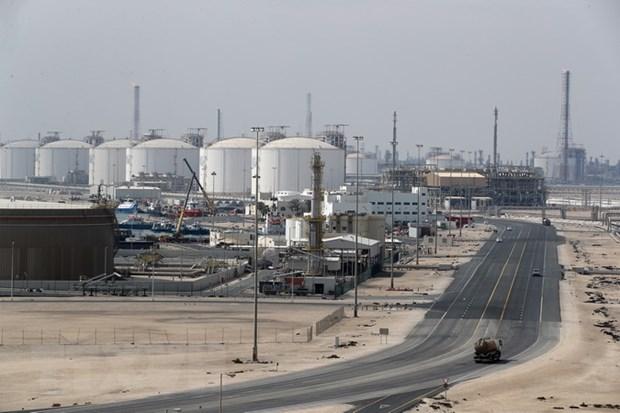 OPEC: Thi truong dau mo the gioi se can bang trong nam nay hinh anh 1