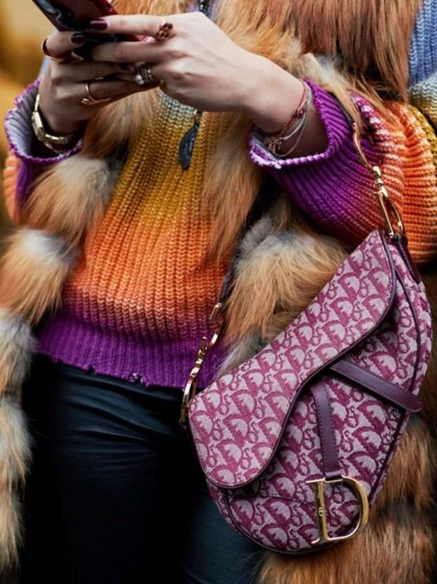 "Chiec tui Saddle hinh yen ngua, ""hot hit"" mot thoi cua Dior tro lai hinh anh 12"