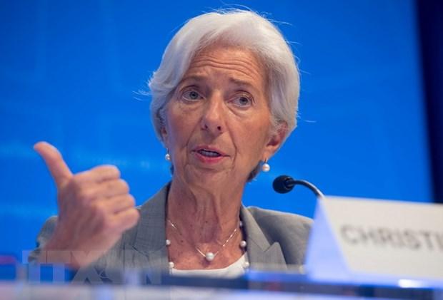 IMF hoi thuc Eurozone hanh dong cung co nang luc tai chinh hinh anh 1