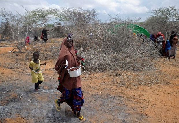 IOM: So nguoi di cu chay sang Yemen len toi gan 100.000 nguoi hinh anh 1