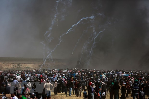Iran doi xet xu lanh dao Israel vi tan sat dam mau nguoi Palestine hinh anh 1