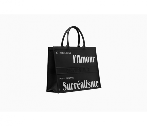 Dior Book Tote - Chiec tui xach mang theo duoc ca the gioi hinh anh 19