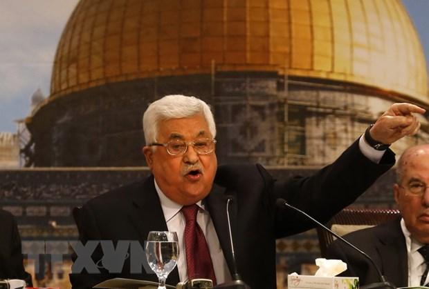 Palestine hoan toan nghiem tuc ve mong muon hoa binh voi Israel hinh anh 1