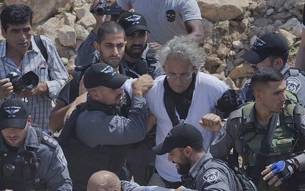 Giao su My ngan can Israel pha ngoi lang cua nguoi Palestine o Bo Tay hinh anh 1