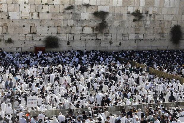 My cat giam vien tro giai quyet xung dot giua Israel va Palestine hinh anh 1