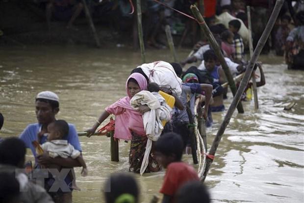Thu tuong Bangladesh yeu cau som hoi huong nguoi ti nan Rohingya hinh anh 1