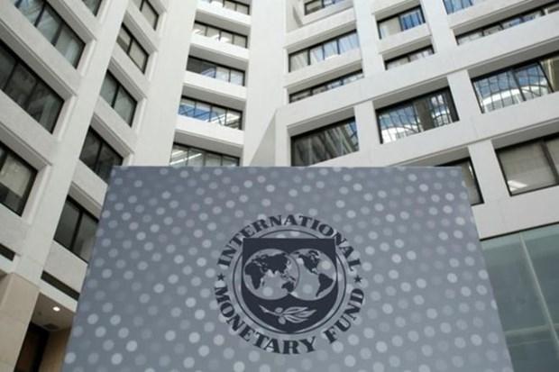Nam Phi co kha nang se de nghi IMF giup giai quyet no cong hinh anh 1