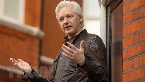Nha sang lap WikiLeaks Julian Assange neu dieu kien ra dau thu hinh anh 1