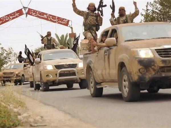 Syria: Lien minh SDF do My hau thuan noi lai chien dich chong IS hinh anh 1
