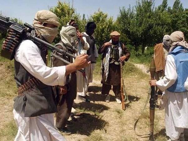 Taliban dam phan voi quan chuc My ve cham dut xung dot Afghanistan hinh anh 1