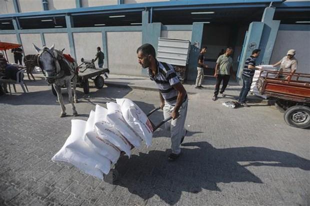 Saudi Arabia cam ket dong gop 50 trieu USD cho UNRWA hinh anh 1