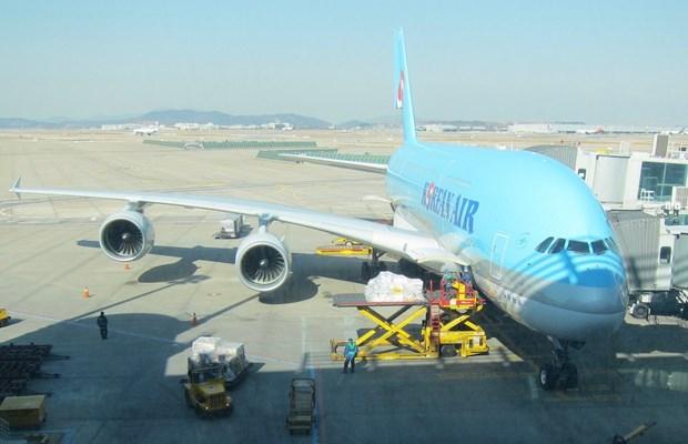 Mien thue hang hoa nhap khau cua hang hang khong Korean Airlines hinh anh 1