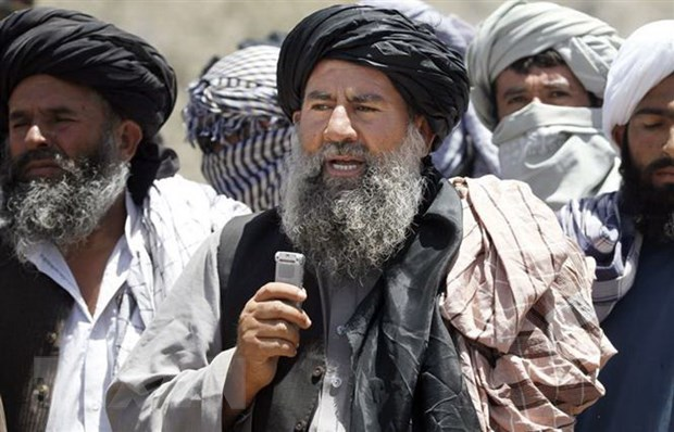 Them mot thu linh cua Taliban o Afghanistan bi tieu diet hinh anh 1