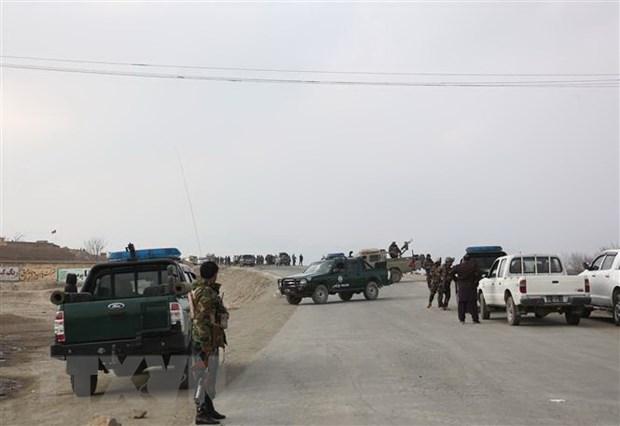 Afghanistan: Phien quan tan cong chot kiem soat, 15 canh sat tu vong hinh anh 1