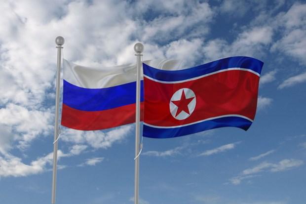 Phai doan Trieu Tien toi Vladivostok de hoi dam voi quan chuc Nga hinh anh 1