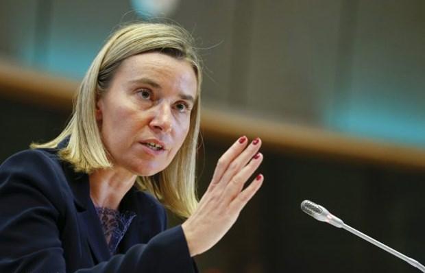 EU se quyet dinh lenh trung phat moi nham vao Nga trong vai tuan toi hinh anh 1
