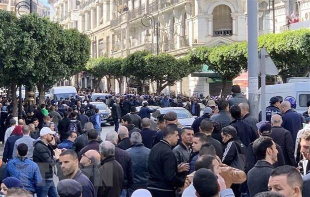 Algeria: Ung cu vien dang PVN nop ho so ung cu tong thong hinh anh 1