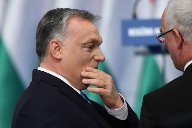 Nhom dang lon nhat trong Nghi vien chau Au neu dieu kien voi Hungary hinh anh 1