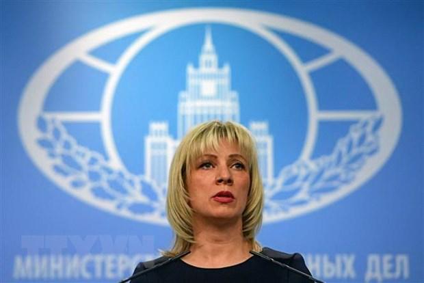 Nga cao buoc Ukraine co tinh gay cang thang tai khu vuc Donbass hinh anh 1