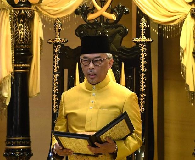 Tan Quoc vuong Malaysia keu goi nang cao tinh than doan ket quoc gia hinh anh 1