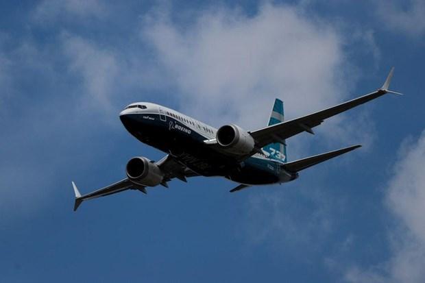 Nhat Ban cam van hanh may bay Boeing 737 MAX trong khong phan hinh anh 1