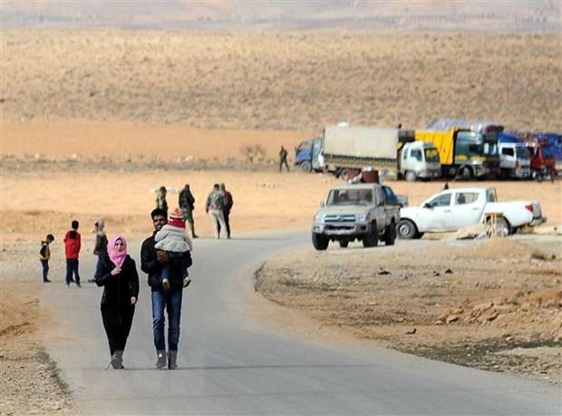 Dai su Nga hoi thuc Liban va Syria binh thuong hoa quan he hinh anh 1