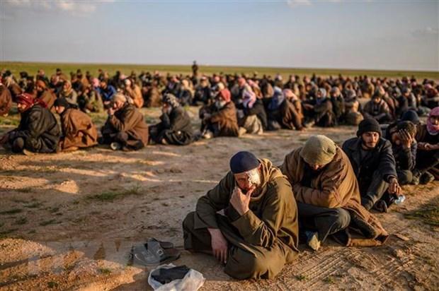 Tho Nhi Ky va Nga tang cuong hop tac trong van ve Syria hinh anh 1