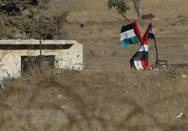 Syria kien quyet gianh lai cao nguyen Golan bang moi bien phap kha thi hinh anh 1
