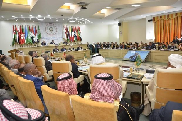 Tunisia: Hoi nghi Arab can phat di thong diep ve nha nuoc Palestine hinh anh 1
