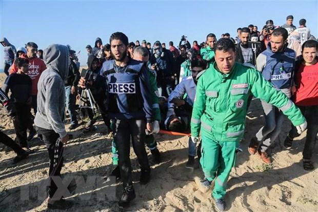 Phong trao Hamas da tiep nhan thoi han ngung ban tu phia Israel hinh anh 1