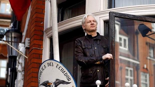 Nha sang lap WikiLeaks doi Thuy Dien boi thuong gan 1 trieu USD hinh anh 1