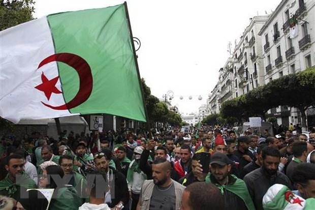 Algeria: Bieu tinh lon phan doi quan chuc chinh quyen cu tai nhiem hinh anh 1