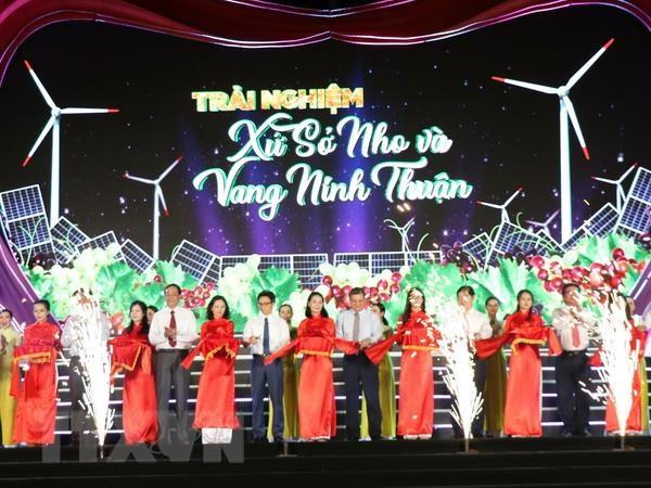 Pho Thu tuong Vu Duc Dam du khai mac le hoi Nho va Vang Ninh Thuan hinh anh 1