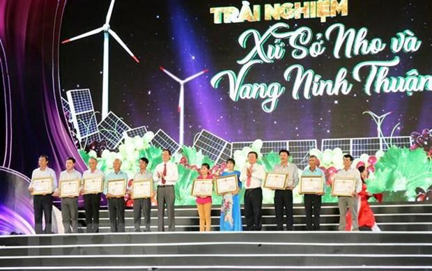 Pho Thu tuong Vu Duc Dam du khai mac le hoi Nho va Vang Ninh Thuan hinh anh 2