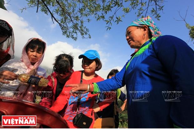 Hoang Lien Son - Diem den hap dan cua the gioi nam 2019 hinh anh 12