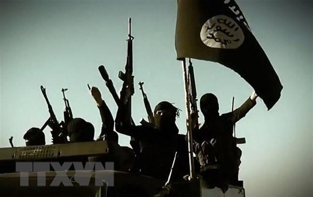 IS va al-Qaeda van khong ngung mo rong va 'vuon voi bach tuoc' hinh anh 1