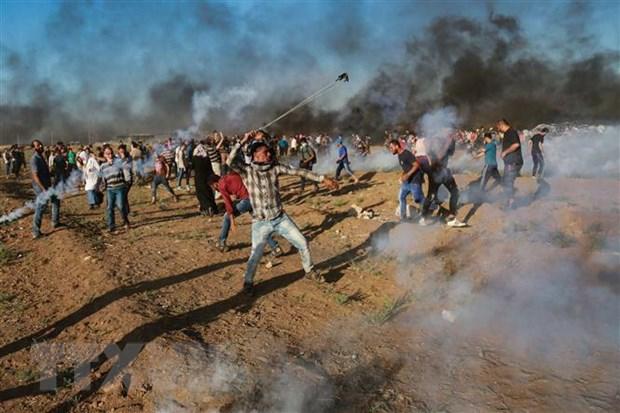 Jordan khang dinh lap truong ve giai phap 2 nha nuoc Israel-Palestine hinh anh 1