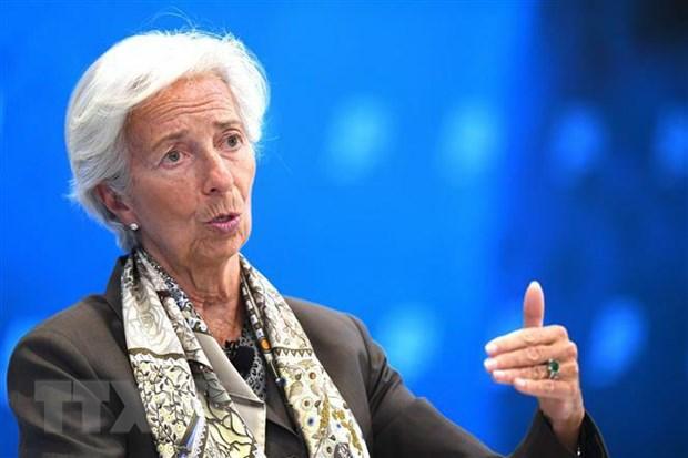 IMF danh gia trien vong kinh te tai cac vung lanh tho Palestine hinh anh 1