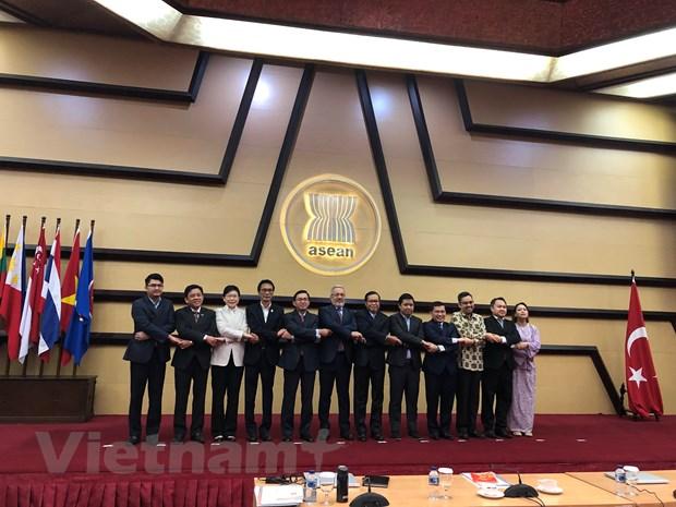 ASEAN-Tho Nhi Ky thong nhat danh muc linh vuc hop tac uu tien den 2023 hinh anh 1